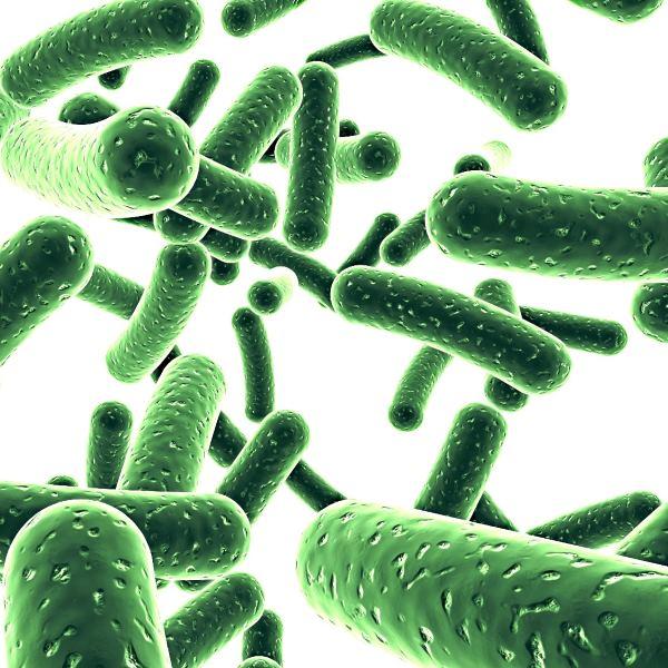 Пробиотики — список препаратов для детей, аналоги Линекса