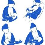 Как правильно прикладывать ребенка для кормления позы, правильный захват