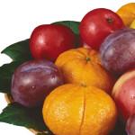 zdp_fruits
